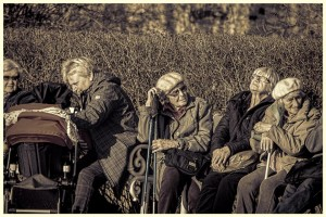 Aging in place elder law new concepts Minneapolis Minnesota Attorney